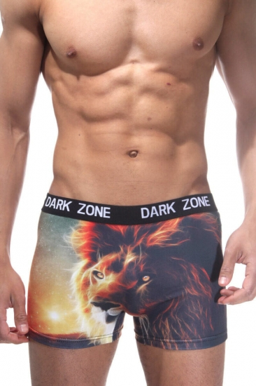 Darkzone Трусы мужские боксеры с 3D принтом DZN1052