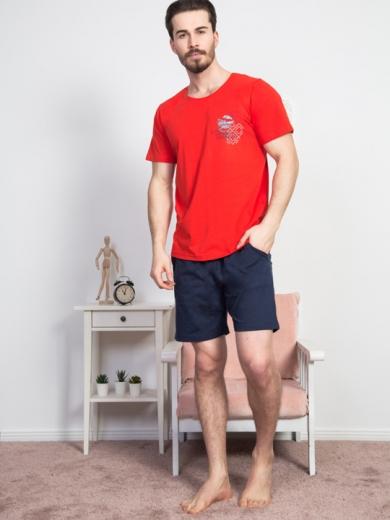 vienetta №811315 0000 Комплект мужской -Gazzaz с шортами