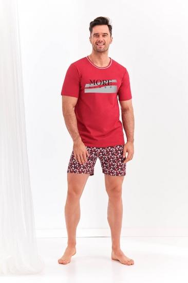 taro 20S Szymon 2086-01 пижама мужская с шортами