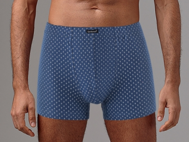 Gentlemen Трусы мужские GS7850 BIG шорты