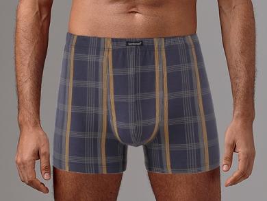 Трусы gentlemen Трусы мужские GS7851 BIG шорты