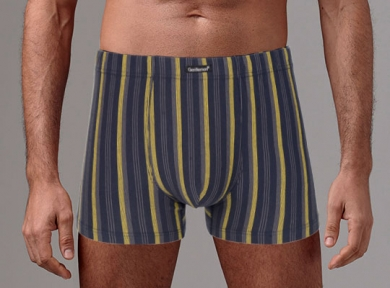 gentlemen Трусы мужские GS7868 шорты